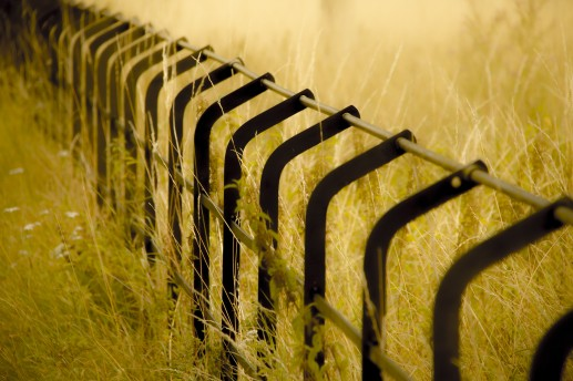 A brand new fence. I edited this to increase the contrast between the black steel and soft, warm tones and textures of the sorrounding grasses.
