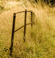 An old and broken fence. The editing is intended to evoke old sepia toned Victorian prints of bucolic country scenes.
