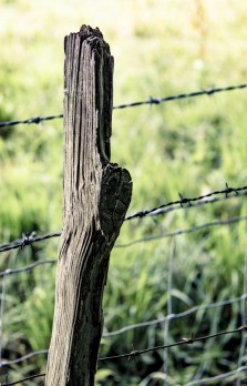 Old post, new wire. The landowner seems keen to remind everyone that whilst the fencing may be new the boundary is old and established.