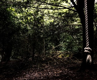 Shadows 2: I like this for the cluttered, slightly spooky looking undergrowth. It gives the rope swing a bit of a sinister appearance reminiscent of a hangman's noose. Thanks to the National Trust for using a white rope!