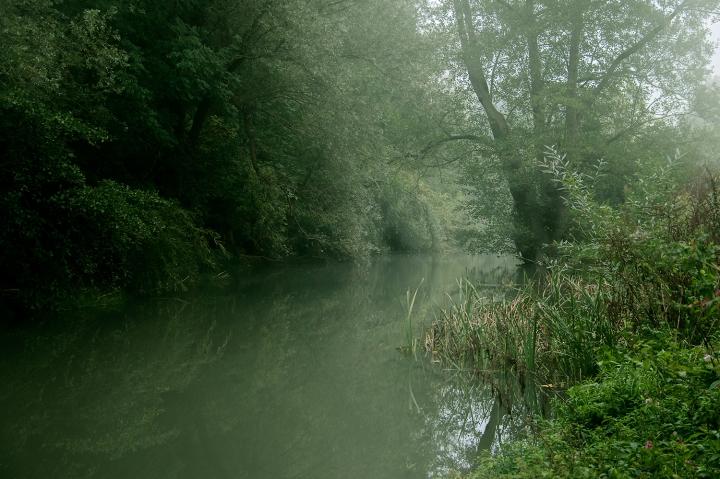 12 Misty Morning - River MoleOCA1